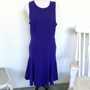 J. Crew Factory Paneled Flare Dress
